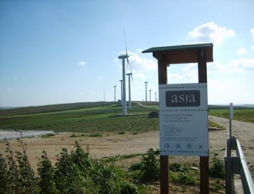 La grande corsa all'eolico in provincia di Trapani. Anche se la rete è satura
